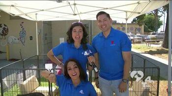 Clear the Shelters TV Spot, 'NBC 4 LA: Fills Our Heart' - Thumbnail 1