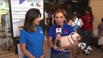 Clear the Shelters TV Spot, 'NBC 4 LA: Fills Our Heart' - Thumbnail 7