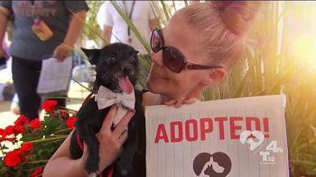 Clear the Shelters TV Spot, 'NBC 4 LA: Fills Our Heart' - Thumbnail 4
