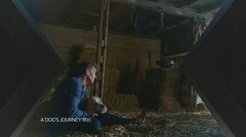 XFINITY X1 TV Spot, 'A Dog's Journey' - Thumbnail 2