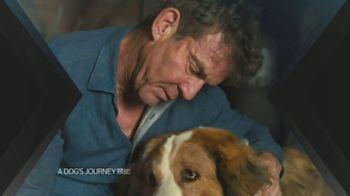 XFINITY X1 TV Spot, 'A Dog's Journey' - Thumbnail 3