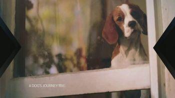 XFINITY X1 TV Spot, 'A Dog's Journey' - Thumbnail 4