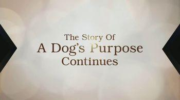 XFINITY X1 TV Spot, 'A Dog's Journey' - Thumbnail 5