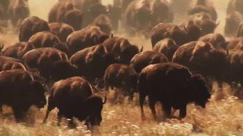 Buffalo Wild Wings TV Spot, 'Weddings: Wing It' Song by Sam Spence - Thumbnail 7