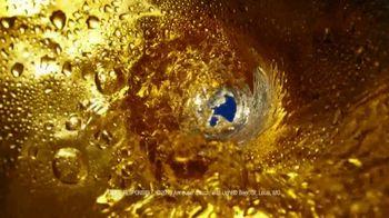 Bud Light TV Spot, 'Bud Knight: Ice' - Thumbnail 5