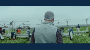 IBM Cloud TV Spot, 'Problem Solvers: Zach Barnes, Farm Manager, Dole' - Thumbnail 3