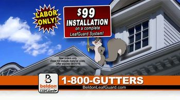 Beldon LeafGuard $99 Installation Sale TV Spot, 'Ladder-Related Accidents' - Thumbnail 6