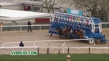 New York Thoroughbred Breeding and Development Fund TV Spot, 'Advantage' - Thumbnail 3