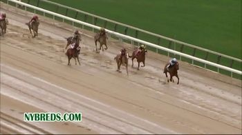 New York Thoroughbred Breeding and Development Fund TV Spot, \'Advantage\'