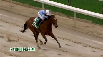 New York Thoroughbred Breeding and Development Fund TV Spot, 'Advantage' - Thumbnail 6