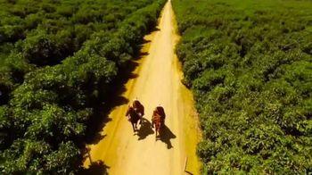 Avocados From Peru TV Spot, 'World Avocado Month' - Thumbnail 4