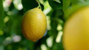 Deloitte TV Spot, 'Lemons' - Thumbnail 3