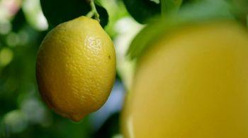 Deloitte TV Spot, 'Lemons' - Thumbnail 4
