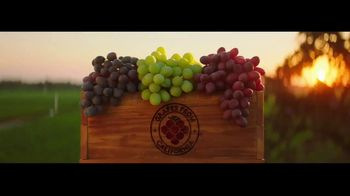 Grapes From California TV Spot, 'Go With Grapes From California'