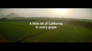 Grapes From California TV Spot, 'Go With Grapes From California' - Thumbnail 1