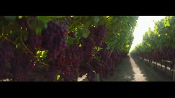 Grapes From California TV Spot, 'Go With Grapes From California' - Thumbnail 3