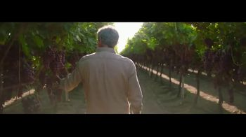 Grapes From California TV Spot, 'Go With Grapes From California' - Thumbnail 4