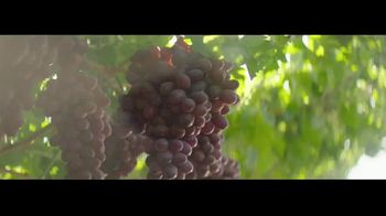 Grapes From California TV Spot, 'Go With Grapes From California' - Thumbnail 5
