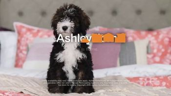 Ashley HomeStore Stars & Stripes Mattress Event TV Spot, 'Beautyrest Adjustable Sets' - Thumbnail 6