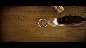 Nature's Recipe Grain Free TV Spot, 'Measured in Wags: True Treats' - Thumbnail 1
