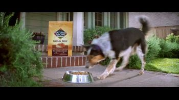 Nature's Recipe Grain Free TV Spot, 'Measured in Wags: True Treats'