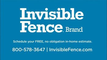 Invisible Fence TV Spot, 'Independence and Security' - Thumbnail 6