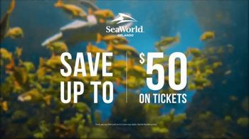 SeaWorld Halloween Spooktacular TV Spot, 'Save Up to $50' - Thumbnail 7