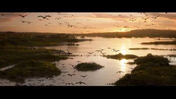 The Lion King - Alternate Trailer 124