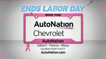 AutoNation 72 Hour Flash Clearance TV Spot, '2019 Silverado Models' - Thumbnail 5