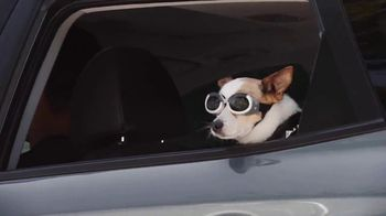 Hyundai Kona TV Spot, 'The Big Dog' [T1]