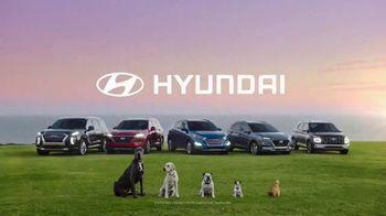 2020 Hyundai Palisade TV Spot, 'Somewhere Fun' [T1] - Thumbnail 9