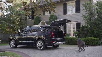 2020 Hyundai Palisade TV Spot, 'Somewhere Fun' [T1] - Thumbnail 8