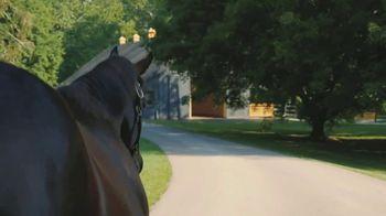 Claiborne Farm TV Spot, 'Blame: Eclipse Champion' - Thumbnail 6