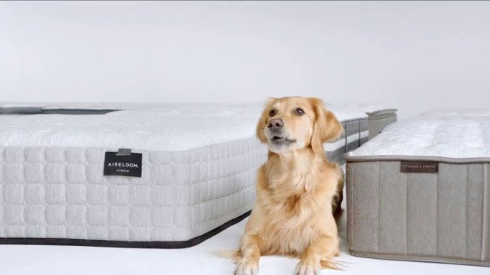 Macy S Memorial Day Mattress Sale Tv Commercial Queen Mattresses Ispot Tv
