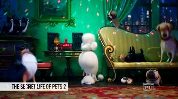 Fandango VIP+ TV Spot, 'The Secret Life of Pets 2' - Thumbnail 6