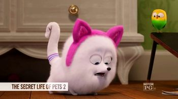Fandango VIP+ TV Spot, 'The Secret Life of Pets 2' - Thumbnail 8