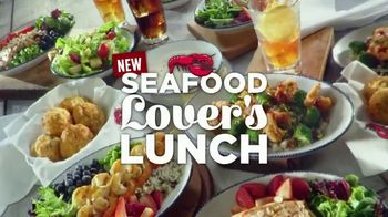 Red Lobster Seafood Lover's Lunch TV Spot, 'Options'