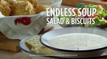Red Lobster Seafood Lover's Lunch TV Spot, 'Options' - Thumbnail 9
