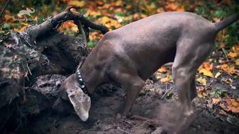 K9 Advantix II TV Spot, 'Animal Planet: Rebarkable Facts' - Thumbnail 3