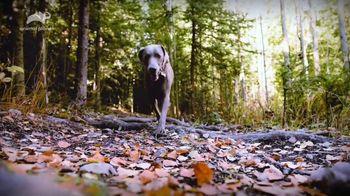 K9 Advantix II TV Spot, 'Animal Planet: Rebarkable Facts' - Thumbnail 6