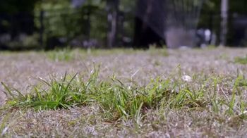Scotts Turf Builder Thick'r Lawn TV Spot, 'HGTV: Spring Spruce Up' - Thumbnail 3