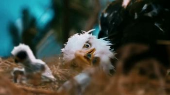Clif Bar TV Spot, 'The Eagle' - Thumbnail 7