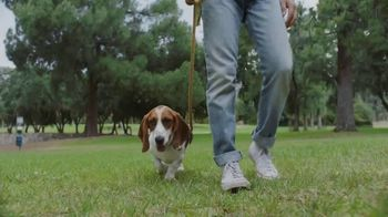 Facebook Groups TV Spot, 'More Together: Found by the Hounds' Song by Patsy Cline - Thumbnail 1