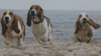 Facebook Groups TV Spot, 'More Together: Found by the Hounds' Song by Patsy Cline - Thumbnail 7