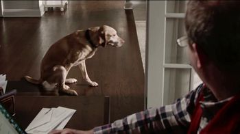 Stanley Steemer $99 Hardwood Special TV Spot, 'Toby: Again' - Thumbnail 4