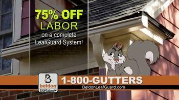 Beldon LeafGuard TV Spot, 'Sharp Edges and Rusty Nails' - Thumbnail 3
