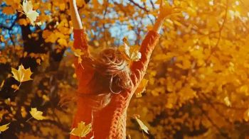 Honda Fall Clearance Sale TV Spot, 'Season to Save' [T2] - Thumbnail 4