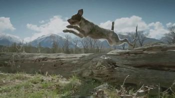 Blue Buffalo TV Spot, 'Feed the Wolf: Venture Into the Wild Sweepstakes' - Thumbnail 2