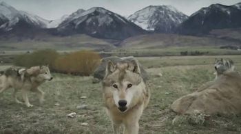 Blue Buffalo TV Spot, 'Feed the Wolf: Venture Into the Wild Sweepstakes' - Thumbnail 4