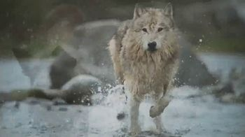 Blue Buffalo TV Spot, 'Feed the Wolf: Venture Into the Wild Sweepstakes' - Thumbnail 7
